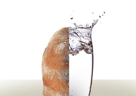 breadwater